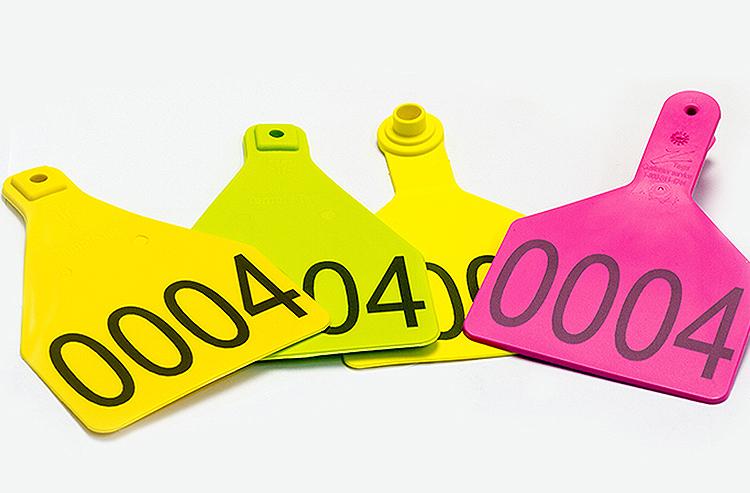 PlasticheColorate Революция пластмасс: лазер FLYPEAK для маркировки всех их видов