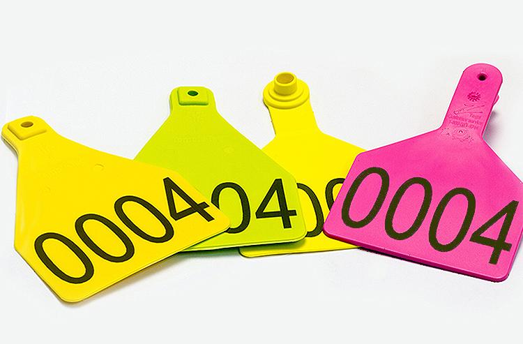 tag01 Plastiche